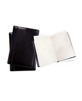 DP-325 Diary Planner