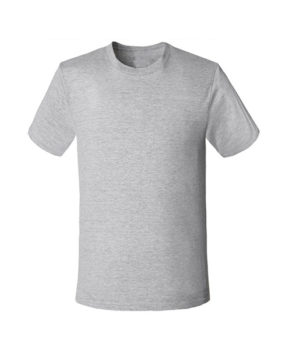 SH-S01 Lt. Gray Shirt